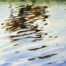 Koe in water, 70 x 100 cm. acryl op doek